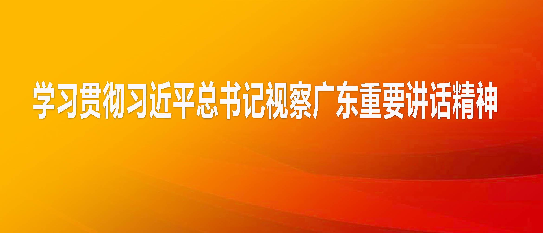 学习贯彻习近平总书记视察广东重要讲话精神